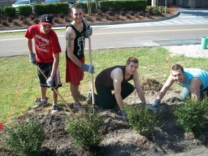 Baseball planting trees